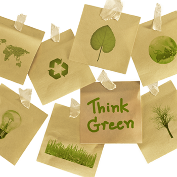Picture for category Eco-Friendly